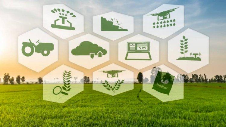 При содействии правительственных программ зафиксированы беспрецедентные результаты развития сельскохозяйственной отрасли в Армении